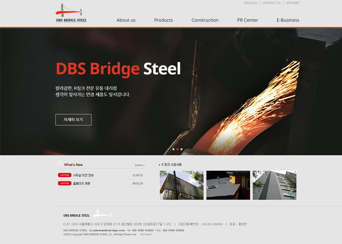 DBS BRIDGE STEEL